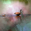 Canadian Geese by Geraldine Scull