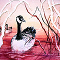 Canadian Geese Sunset by Connie Williams