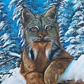 Canadian Lynx by Sharon Duguay