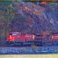 Canadian Pacific Reds by Alice Gipson