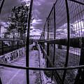 Canal De Lachine Underpass  by Chroma Photographer