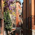 Canal In Venice With Flowers by Michael Henderson