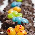 Candy Bird Nests  by John Trax