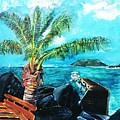 Cane Garden Bay Tortola 1997 by Andre Francis