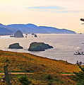 Cannon Beach From Ecola State Park by Margaret Hood