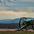 Cannon by David Arment