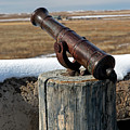 Cannon In Turret At Bents Old Fort by Fred Stearns