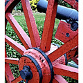 Cannon by Iris Posner