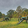 Cannons I by Michael Taylor
