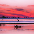 Canoeing On Color by Michael Frizzell