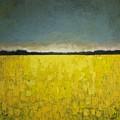 Canola Field N0 1 by Vesna Antic