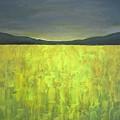 Canola Fields N05 by Vesna Antic