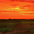 Canola Sunset by Greg Norrell