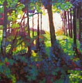 Canopy by Mary McInnis
