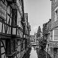 Canterbury Stream by James Lavott