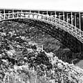Canyon Bridge by Phyllis Denton