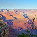 Canyon Grandeur  by Beth Collins