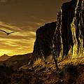 Canyon Hunt by Napo Bonaparte