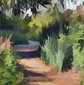 Canyon Path II Painterly by Linda Brody