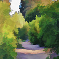 Canyon Path IIi Painterly by Linda Brody