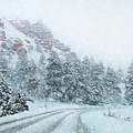 Canyon Snow by Lori Deiter
