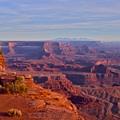 Canyonlands by Aaron Sheckler