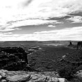 Canyonlands National Park Utah Pan 06 Bw by Thomas Woolworth