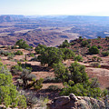 Canyonlands Park Utah Blue To Green Vista by Ron Swonger