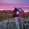 Cape Bonavista Sunset by Tracy Munson