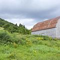 Cape Breton Barn by Jon Faulknor