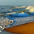 Cape Cod By The Sea by Dianne Cowen