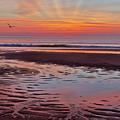 Cape Cod Low Tide Sunrise by Bill Wakeley