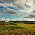Cape Cod Marsh 2 by Frank Winters