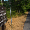 Cape Cod Rail Trail Sign Eastham Path by Toby McGuire