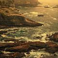 Cape Flattery Misty Morning - Washington by Mitch Spence