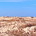 Cape Henlopen Panorama by Robert McCulloch