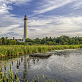 Cape May Lighthouse From The Pond by Nick Zelinsky