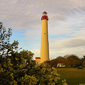Cape May Lighthouse In Spring by Nick Zelinsky