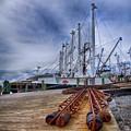 Cape May Scallop Fishing Boat by Priscilla Burgers