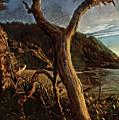 Cape Perpetua Sunset by Thom Zehrfeld
