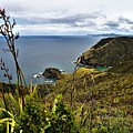 Cape Reinga North Island New Zealand by Heidi Fickinger