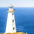 Cape Spear Lighthouse by Liz Leyden