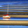 Cape Tidal Flats by John Greim