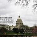 Capital 8699 by Captain Debbie Ritter