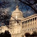 Capitol Building by Lauri Novak