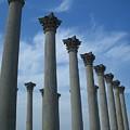 Capitol Columns by Megan Thompson