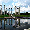Capitol Columns, National Arboretum by David Nicholson