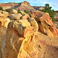 Capitol Reef Boulder Art by Ray Mathis