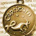Capricorn Zodiac Lucky Charm by Jorgo Photography - Wall Art Gallery