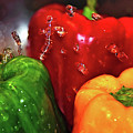 Capsicum In The Wash by Kaye Menner